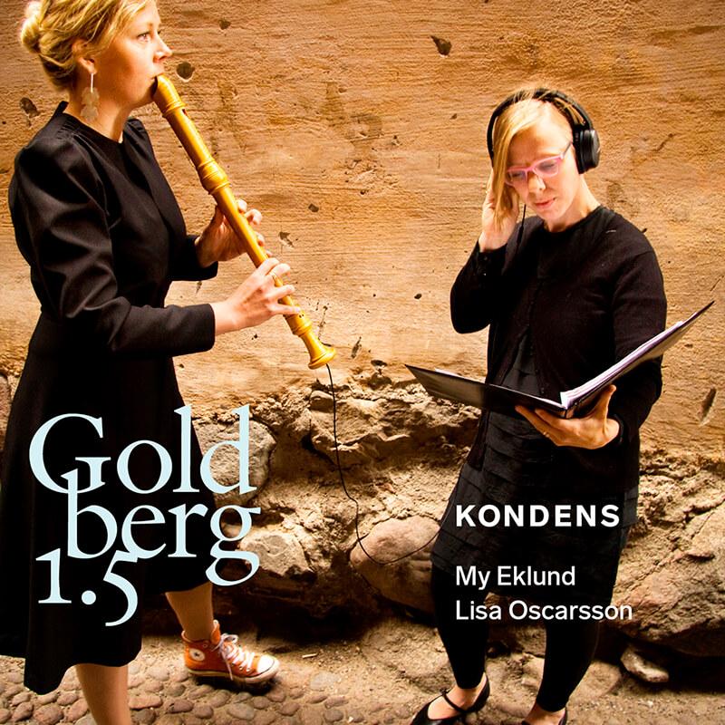 Bildresultat för kondens goldberg 1.5